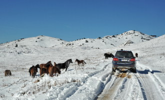Avantura: Mercedes Off-Road na Jahorini