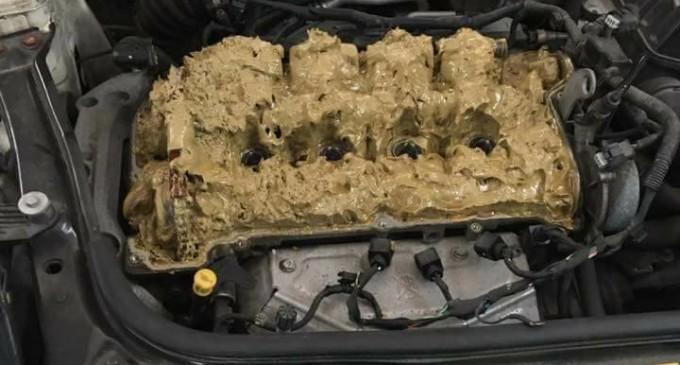 Plavuša u trenutku uništila motor Minija
