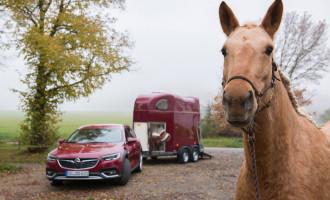 Odaberite sami boju i nijansu za Opel Insigniju